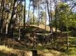 ohrazení lesní pastviny