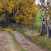 Jindřichovice – cesta, náhled