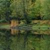 zrcadlení na Jinošovských rybnících_náhled
